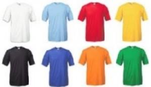 Werbe-Shirt in vielen Farben